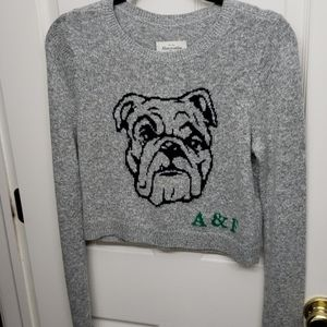 Abercrombie & Fitch Grey Bulldog Sweater Size XS